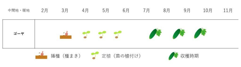 bittergourd-cultivation plan