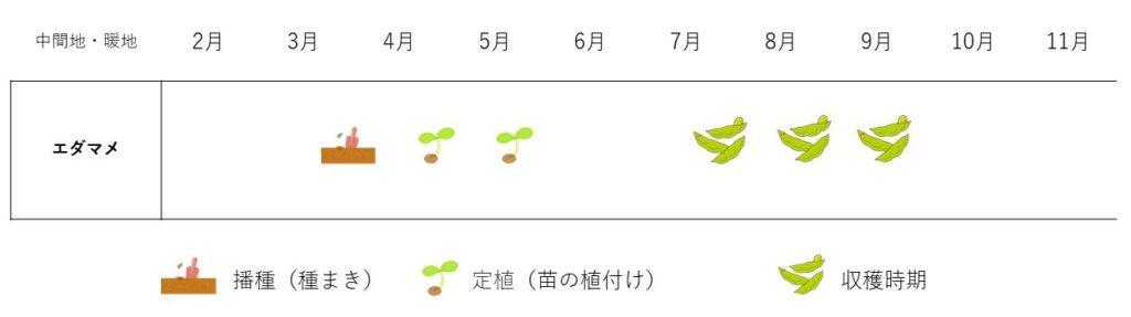 edamame-cultivation plan